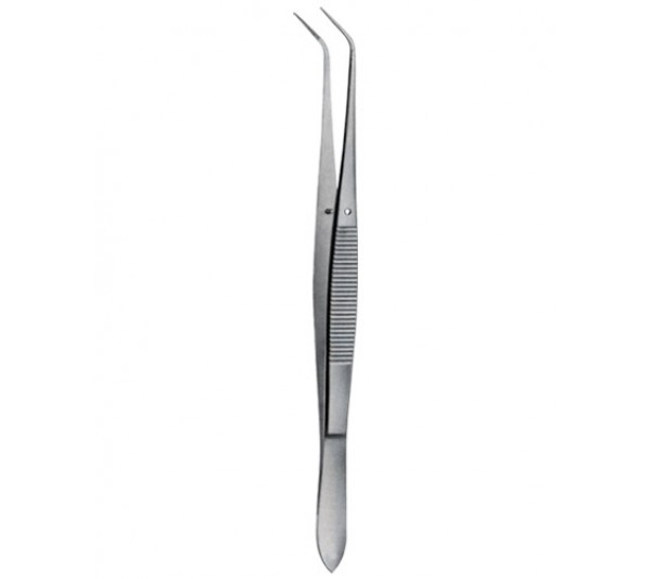 Tooth Tweezers